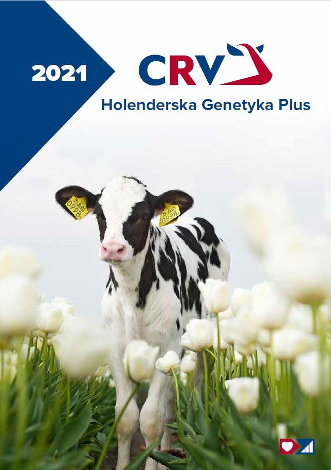HOLENDERSKA GENETYKA
